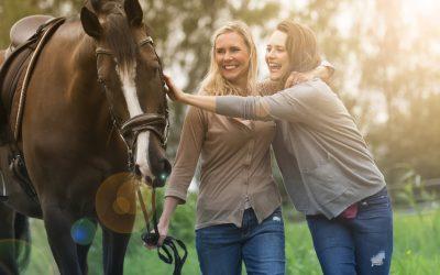 Opitaan hevosilta johtamisesta: osa 2: Johtaja, tiedä minne olet menossa